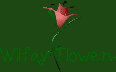 Wilfay Flowers